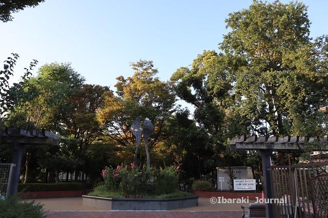 0928若園公園バラ園2IMG_4909