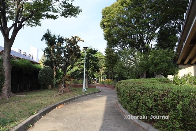 0930-6南茨木緑地向こうが桜通りIMG_4960