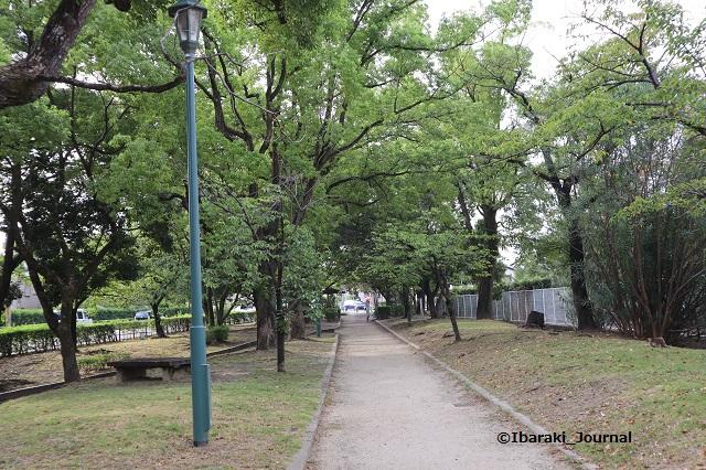 0909-2川端通り沿い元茨木川緑地信号のほうIMG_4216