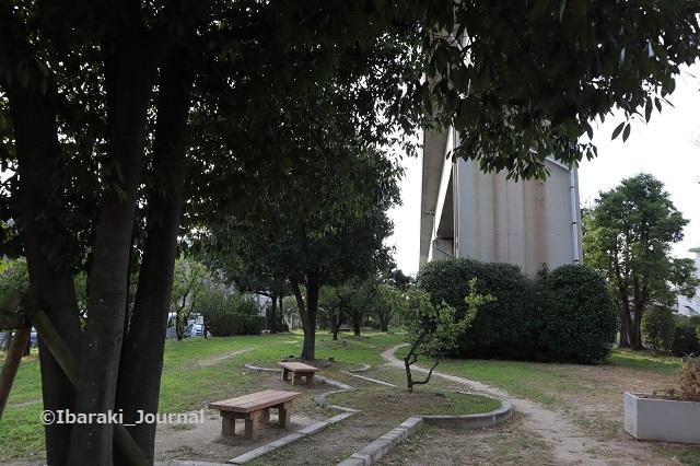 0930-7南茨木緑地風景IMG_4954