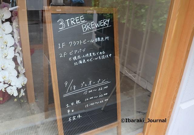 09173treeブルワリーお店の看板IMG_4615
