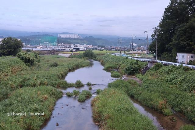 0910茨木川幣久良橋から北のほうIMG_4230