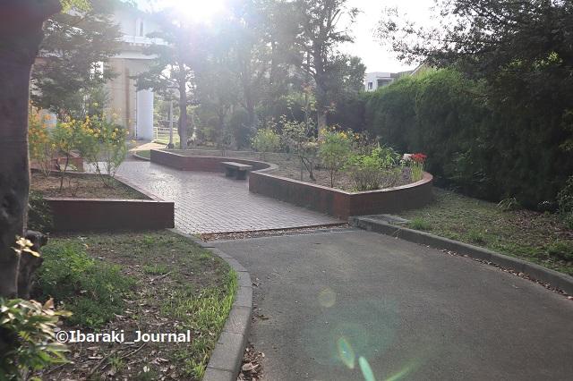0930-2南茨木緑地花壇があるIMG_4963