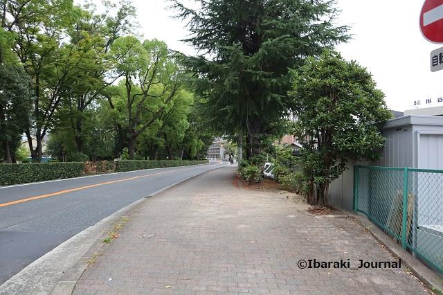 1005川端通りの木がないところ5IMG_5054