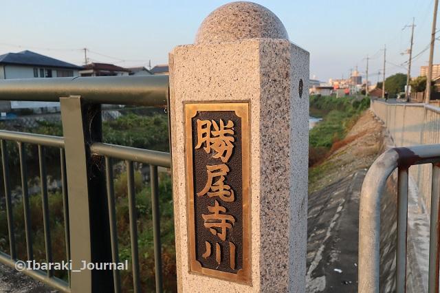 1029勝尾寺川橋のところIMG_5996