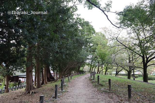 9-1016元茨木川緑地の上の道北側から見るIMG_5449