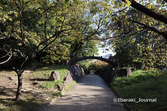 1025元茨木川緑地沢良宜のほう南側からIMG_5937