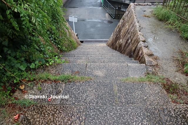 22-1008桑田公園石垣上からの階段IMG_5203