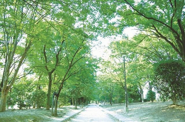 環境フェア散歩会