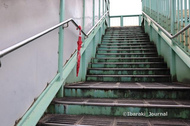 1011竹橋歩道橋に傘の忘れ物IMG_5246