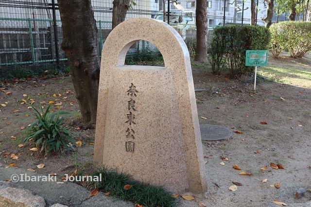 1015奈良東公園IMG_5410