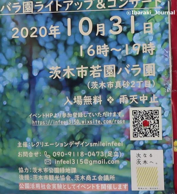 バラ園イベントアップIMG_6009