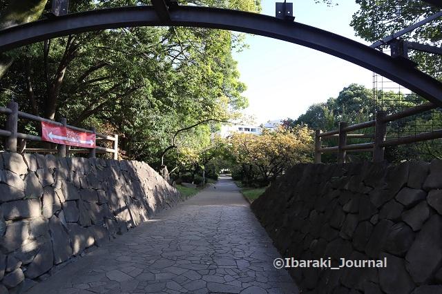 1025元茨木川緑地沢良宜のほう太鼓橋南側からIMG_5938
