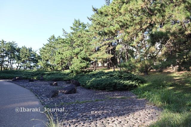1025元茨木川緑地沢良宜のほう石の広場IMG_5924