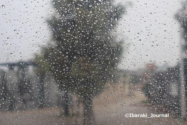1008雨の日の桑田公園IMG_5176