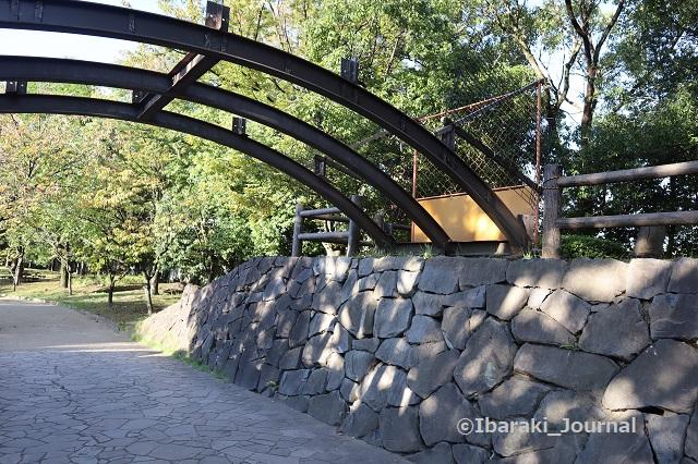 1025元茨木川緑地沢良宜のほう太鼓橋通れないIMG_5922
