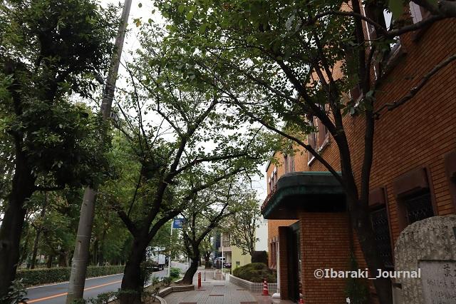 1005川端康成文学館IMG_5041