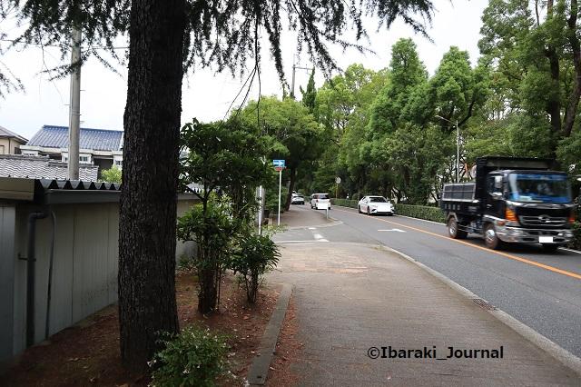 1005川端通りの木がない3南側からIMG_5051