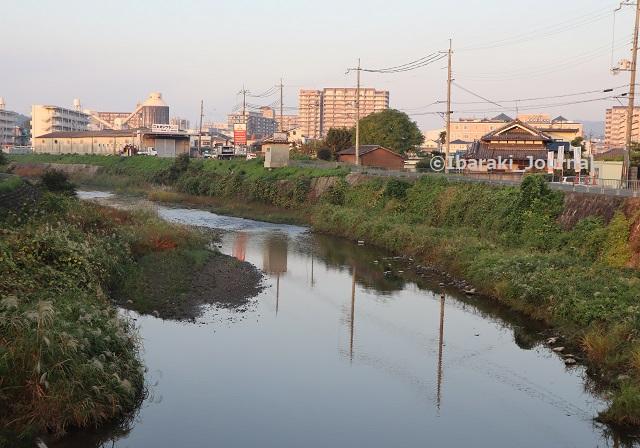 1029勝尾寺川の西河原橋のところからIMG_5995