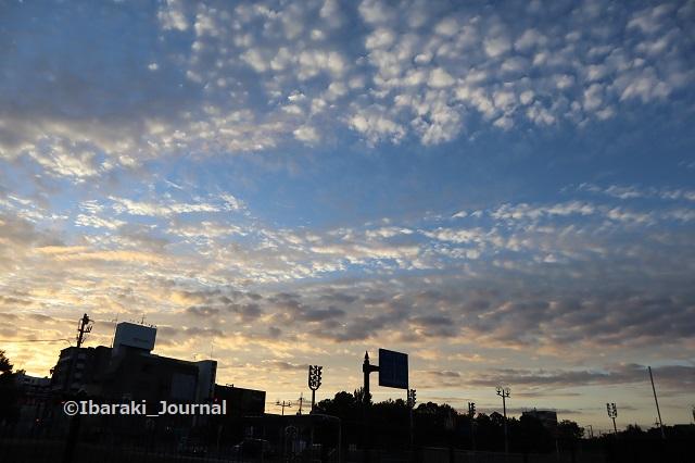 1007芝生広場から見る空IMG_5127