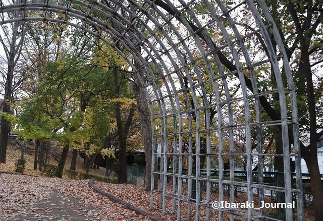 1127川端通り公園坂の上のアーチIMG_7051