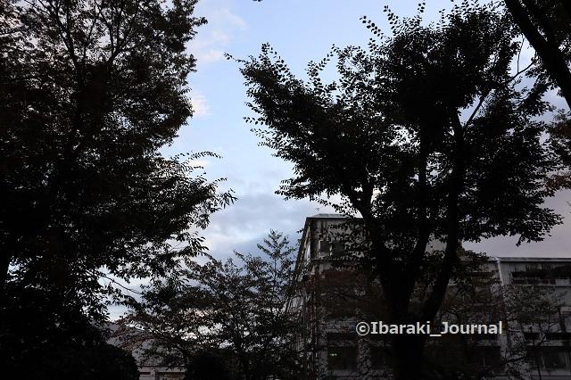 1103元茨木川緑地から茨高のほうIMG_6140