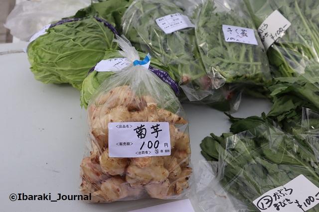 5菊芋IMG_6850