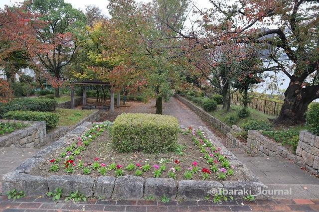 1107川端通りへの元茨木川緑地IMG_6422