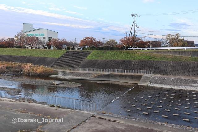 1130茨木川を合流の上からIMG_7211