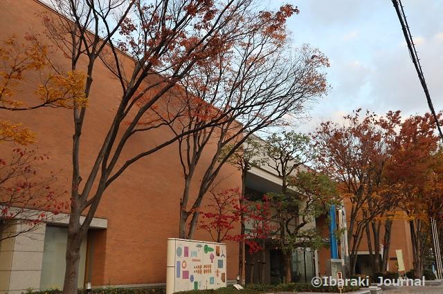 1116茨木中央図書館IMG_6764
