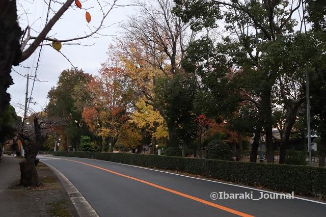 1127川端通りIMG_7042