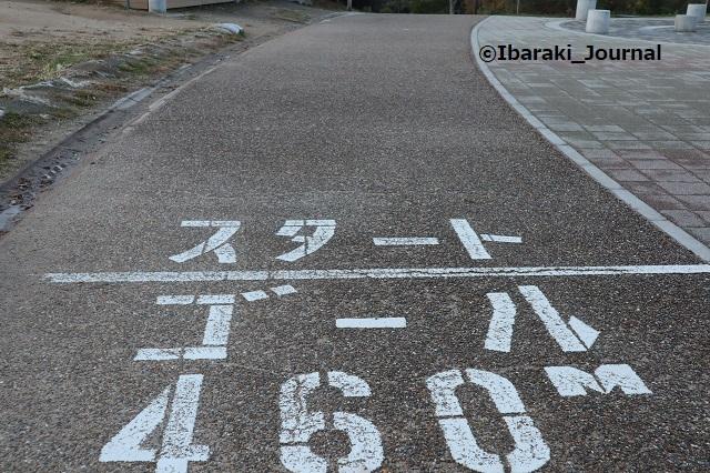 A1128歩道1IMG_7138