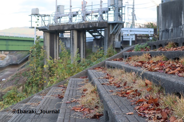 1130茨木川のところIMG_7206