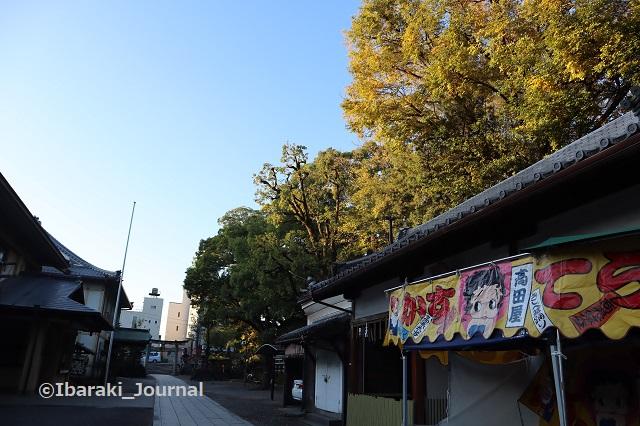 1115茨木神社中から鳥居のほうIMG_6737