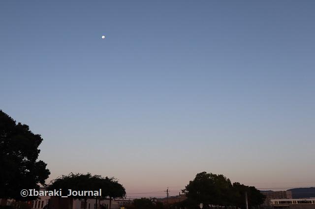 1104斎場そば公園で月見えるIMG_6177