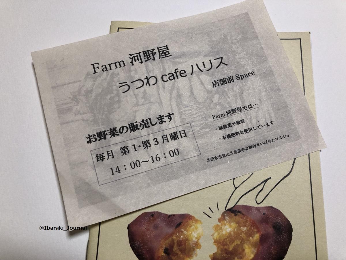 器カフェハリスで野菜販売もIMG_8161