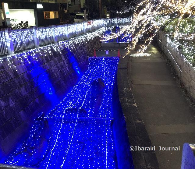 1229元茨木川緑地高橋のところIMG_8757