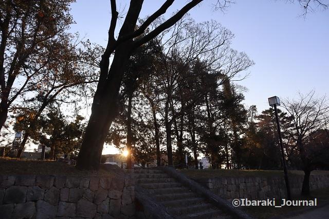 1222-11元茨木川緑地からの日の出IMG_7944