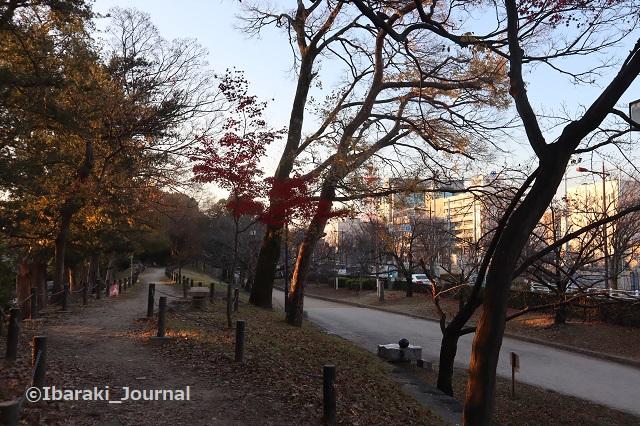 1222-2元茨木川緑地茨木神社沿いの道1IMG_7923