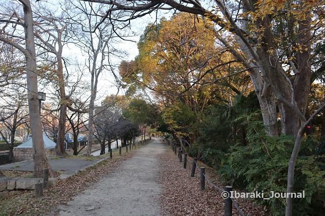 1222-10元茨木川緑地の茨木神社沿い歩道IMG_7941
