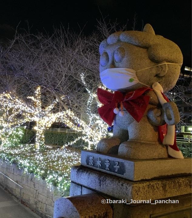 202茨木童子クリスマスのイルミNS4-0009