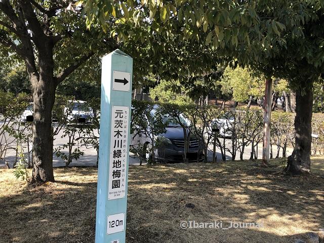 沢良宜公園から梅林のほうIMG_0056