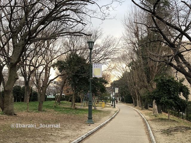 0223元茨木川緑地南の方見るIMG_0242