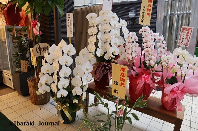 とり粂さんの花2IMG_9598