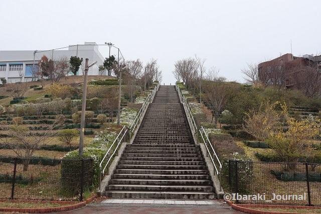 0316彩都西の階段をしたから見るIMG_9624