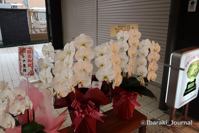 とり粂さんの花3IMG_9601