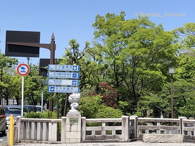 高橋信号桜通り側0427IMG_2018