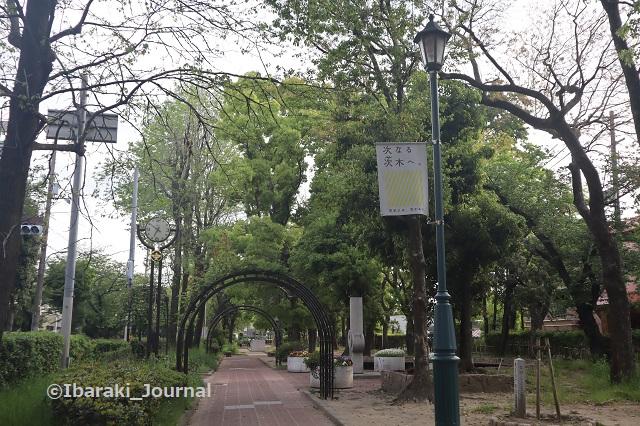 8-0425元茨木川緑地川端文学館そばIMG_0310