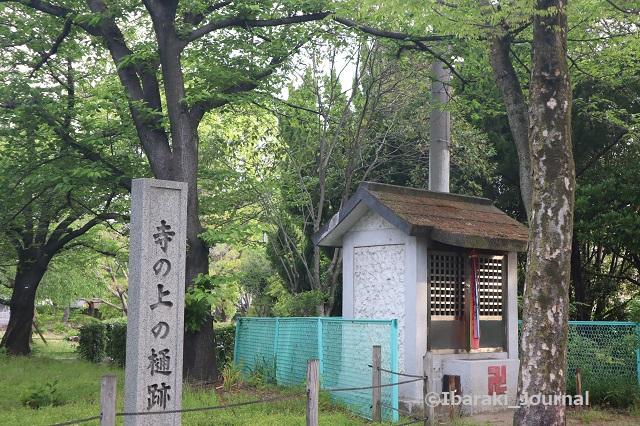 2-0425元茨木川緑地の寺の上の樋跡IMG_0292