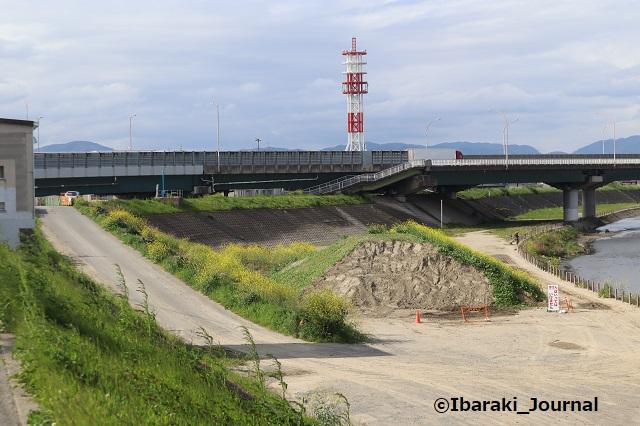 0416あけぼの橋から北のほうの土手1IMG_0189
